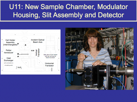 Denise Monteleone at the U11 beamline